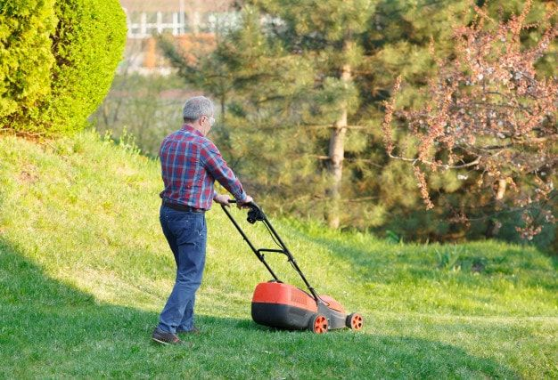man mows lawn grass with lawn mower 110955 851